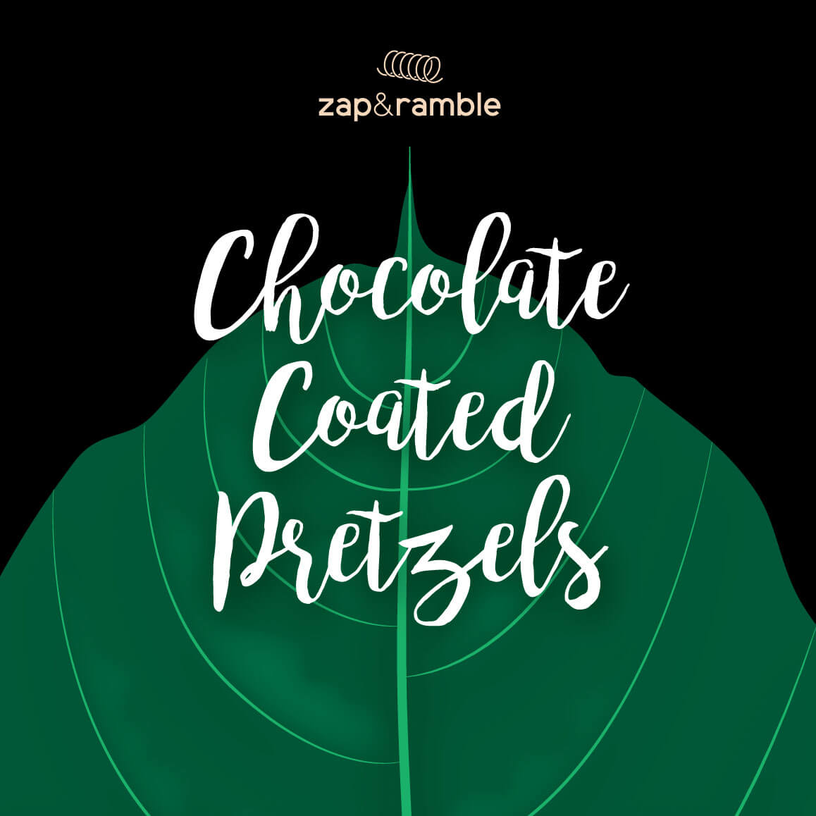 chocolate coated pretzels packaging design front